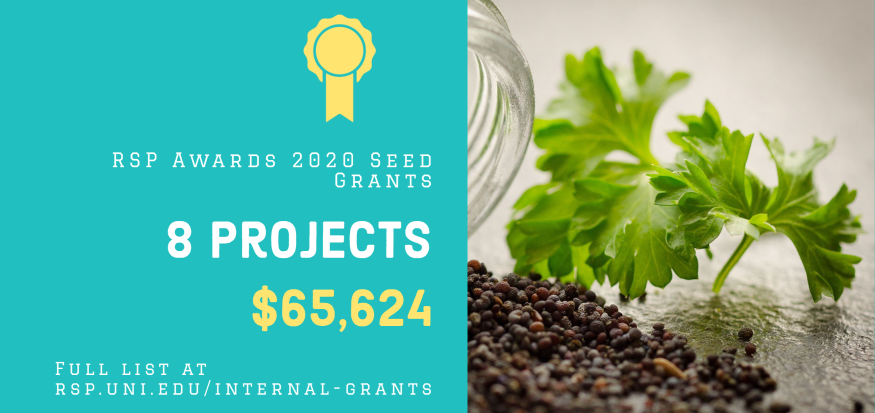 RSP Seed Grants - Fall 2020